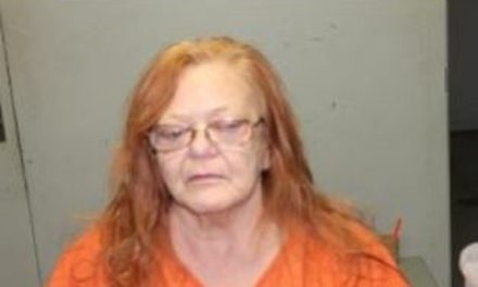 Livingston County authorities asking for help finding elderly woman hiding from police
