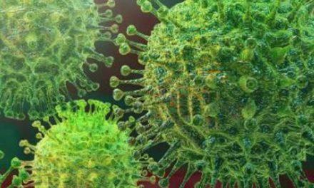 NEWSMAKER:  Domestic response to coronavirus containment