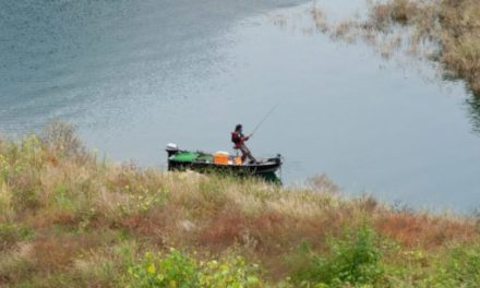 MDC to temporarily waive fishing permits starting Friday