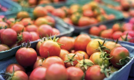 MU Horticulture specialists offer information on hardening off plants, proper tomato care