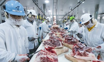 Over 400 test positive for COVID-19 at Triumph Foods as employee testing wraps up