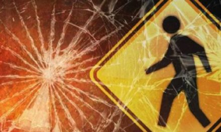 Pedestrian struck and killed after walking into traffic
