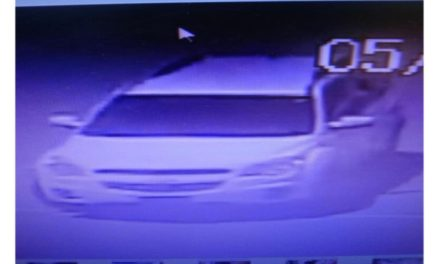 Harrisonville Police looking for two females wanted for multiple thefts