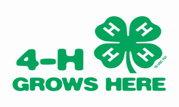 SUPPORT 4-H ON GIVING TUESDAY
