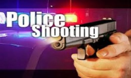 Livingston County prosecutor: Officer-involved shooting 'lawful and justified'