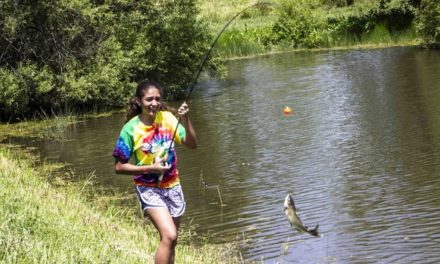 MDC provides channel catfishing opportunities at Kansas City area lakes