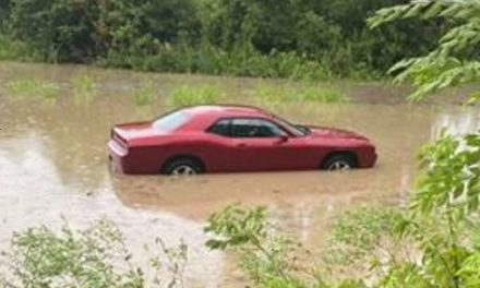Occupant rescued after car driven through flood water