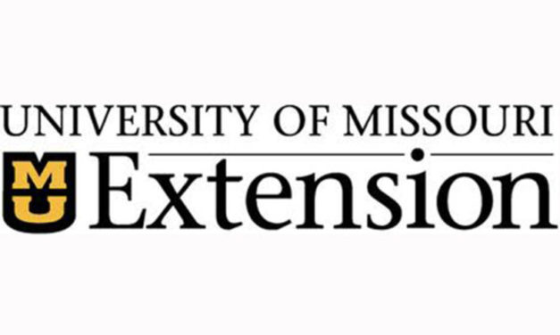 MU Extension offering online Fall and Winter Cattle Forage Management Workshop Aug. 6