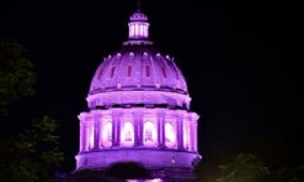 Governor orders pink light on dome, mansion for Breast Cancer Awareness month
