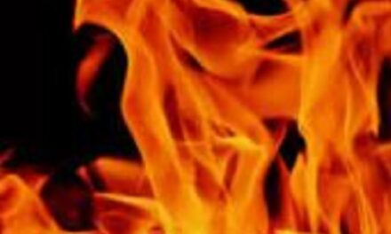 Firefighters extinguish Chillicothe chimney fire