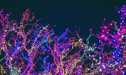 Carrollton Christmas Light Parade goes in 'reverse' this Friday; shop hop starts Saturday