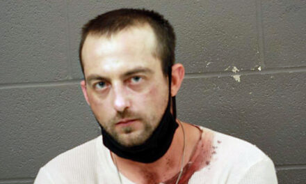 Bunceton man in custody for vehicle theft, burglary and other charges