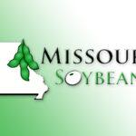 Missouri Soybean's New COO