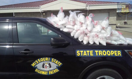 88 pounds of meth discovered in traffic stop in Saline County