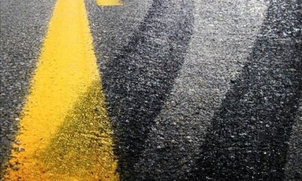 Driver injured attempting to avoid animal in road