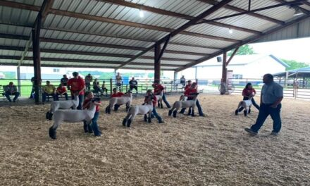 Carroll County Livestock Leaders in need of community support for FFA/4-H youth building