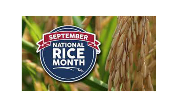 'RICE to the Challenge' Scholarship Video Contest